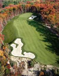 Red Tail GC: #6