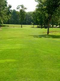 Longhi's Golf: #9