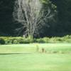 A view of a green at White River Golf Club